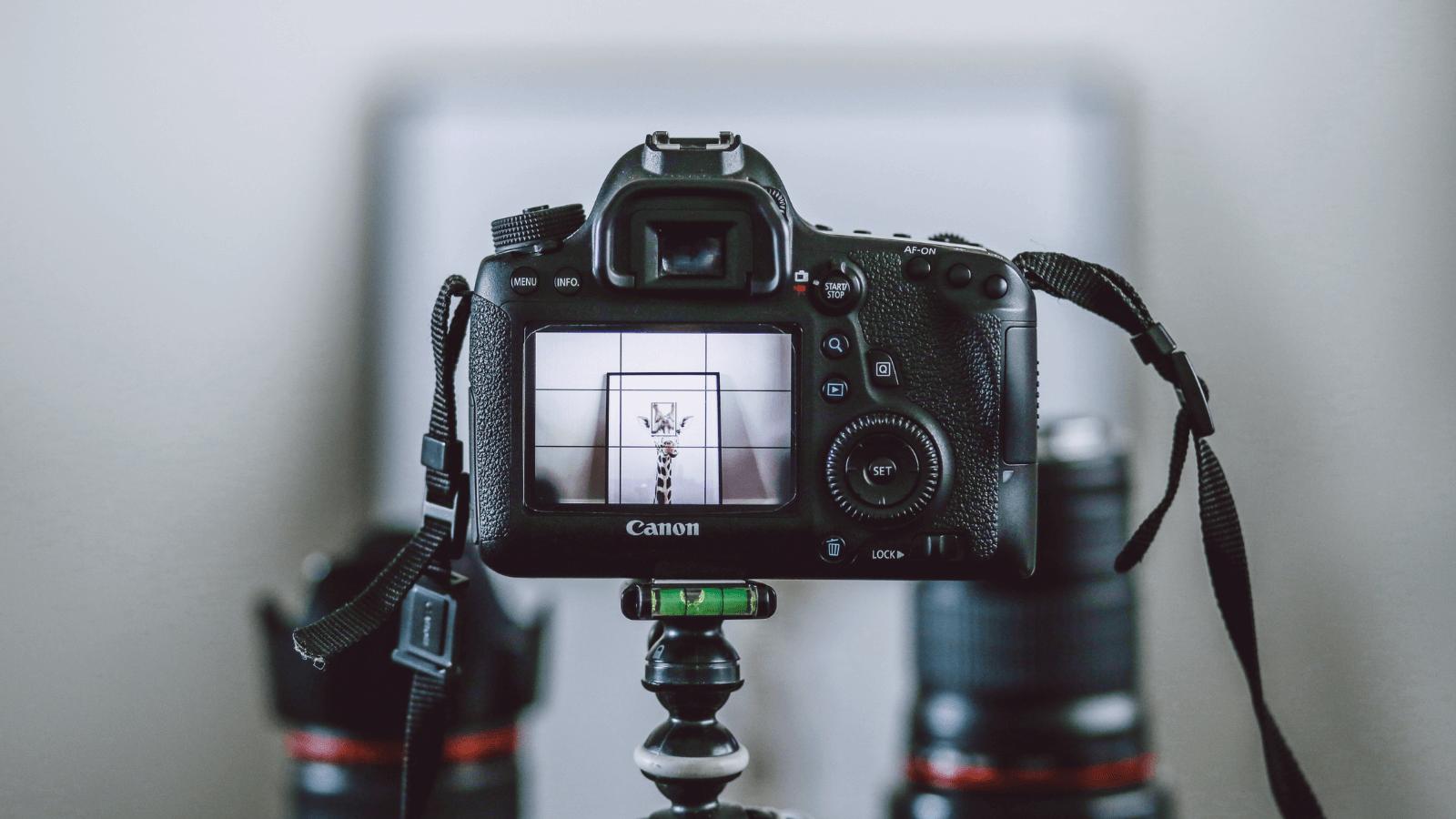 camera-rental-business